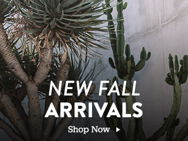 New Fall Arrivals. Shop Now.