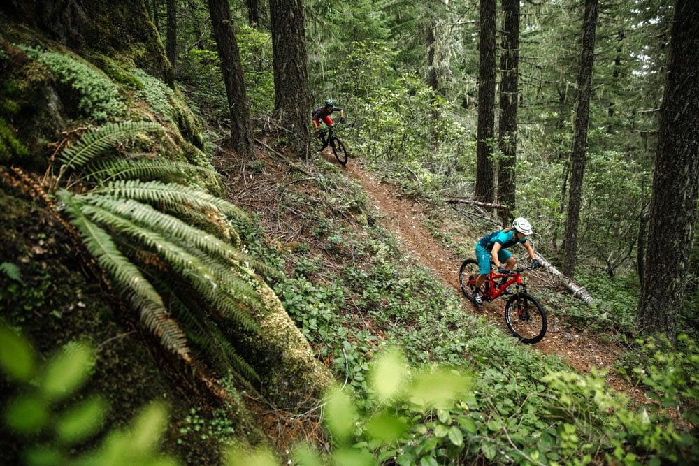 Oakridge Mountain Bike Trail Guide Evo