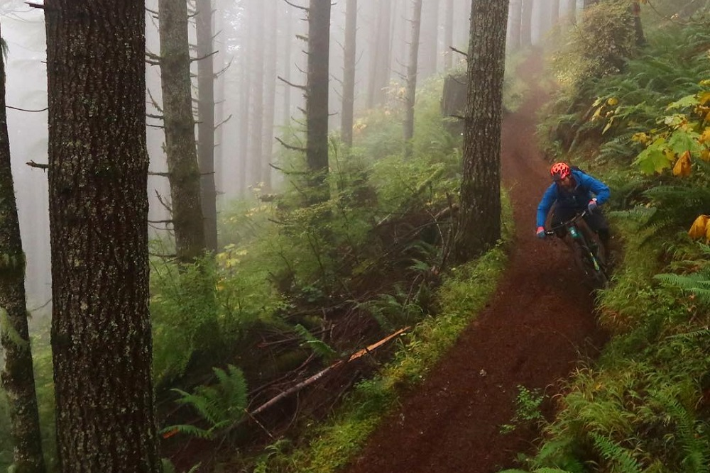 Olympia Amp Olympic Peninsula Mountain Bike Trail Guide Evo