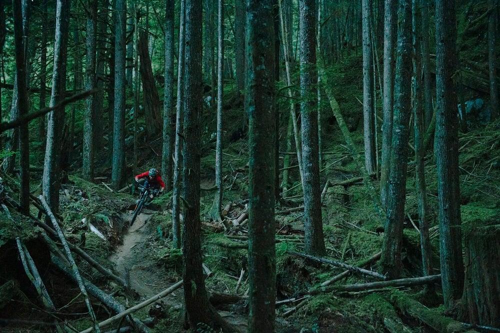 Best Mountain Bike Trails Near Seattle & Puget Sound | evo | evo