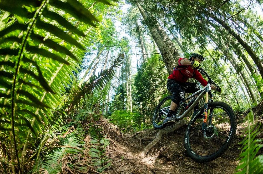 Duthie Hill Mountain Bike Park Trail Guide Evo