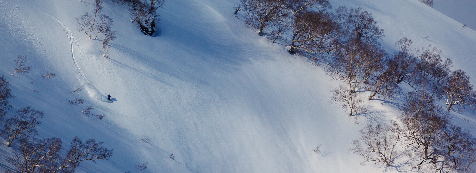 Japan Skiing & Snowboard Travel Guide | evo